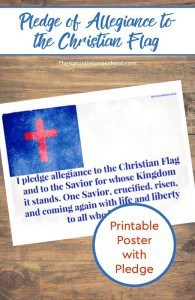 pledge-of-alleiance-to-the-chirstian-flag-pin1