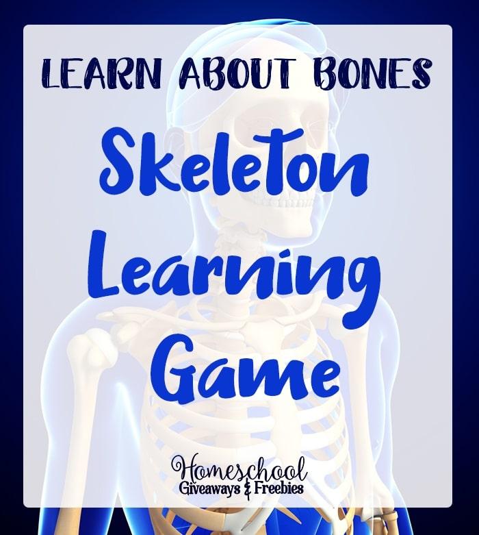 FREE Printable Skeleton Learning Game
