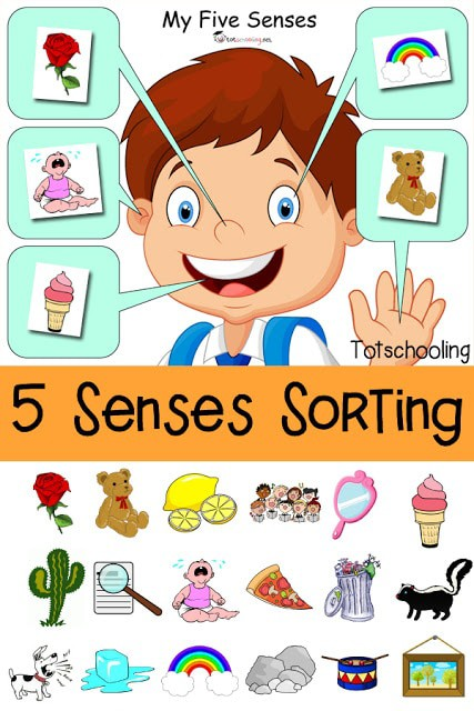 5 Senses Sorting Printable_pin