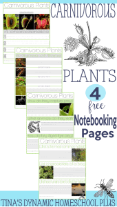 Carnivorous-Plants-Notebooking-Pages-@-Tinas-Dynamic-Homeschool-Plus