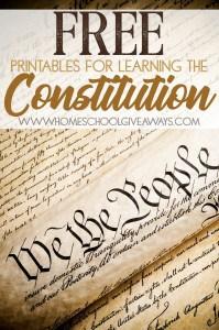 Constitution_pin