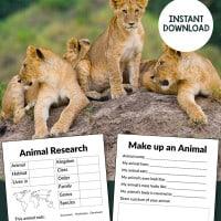 animal-report-pin