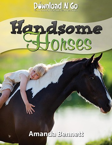 handsomehorses