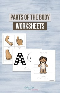 parts-of-the-body-worksheets-for-kids