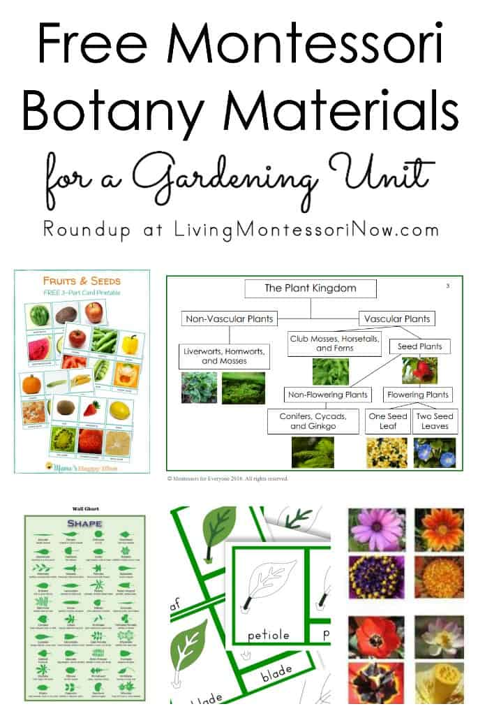 Free-Montessori-Botany-Materials-for-a-Gardening-Unit
