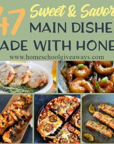 Did you know September is National Honey Month? Why not celebrate by picking out some of these sweet & savory dishes made with honey! From chicken to pork to seafood, we've got you covered! :: www.homeschoolgiveaways.com
