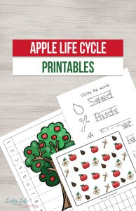 apple-life-cycle-printables