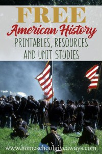American History_pin
