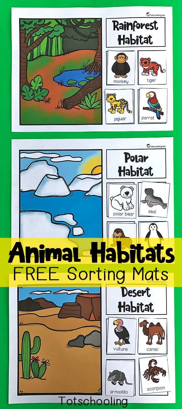 Animal-Habitats-Sorting-Mats