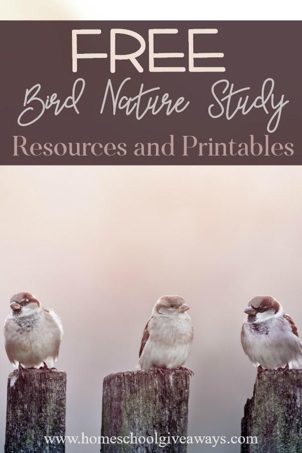 Bird Units_pin