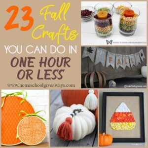 Whether you're crafty or not, these quick and easy Fall themed crafts are perfect for beginners and children too! In an hour or less, you will be able to spruce up any living space and have it ready for Fall! :: www.homeschoolgiveaways.com