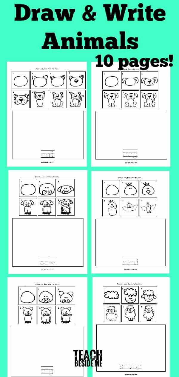 How-to-Draw-Animals_-Draw-Write-Animals