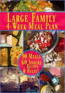 Large-Family-Meal-Plan-600x857