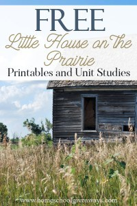 Little House on the Prairie_pin
