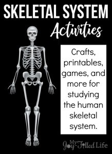 Skeleton-Activities-Pin-600x825