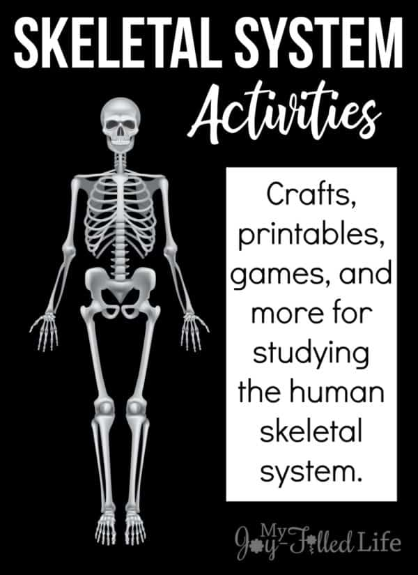 photo regarding Free Printable Skeleton titled Absolutely free Printables, Online games, and Crafts towards Understand the Skeletal
