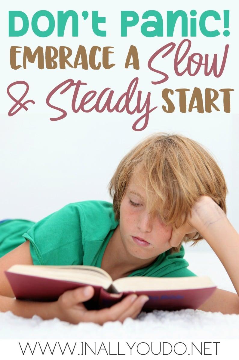 Slow-Steady_pin