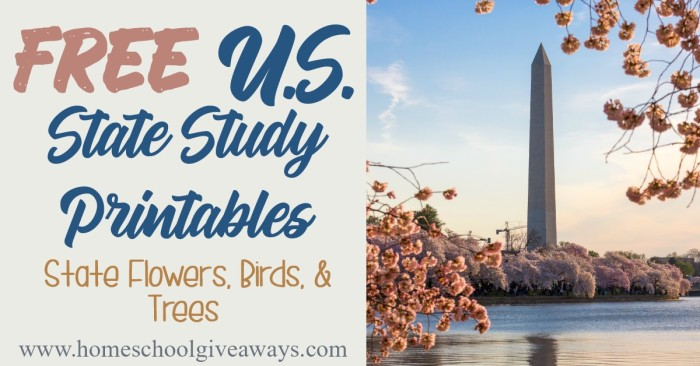 US State Studies_FB