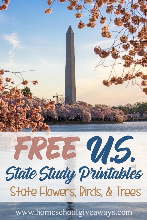 US State Studies_pin