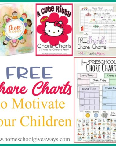 If you're looking for some great chore charts to help keep your house in order and your kids organized, check out these FREE chore charts that will Motivate them. :: www.homeschoolgiveaways.com