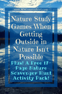 Pin_Nature-Study-Games-When-Getting-Outside-in-Nature-Isnt-Possible-9