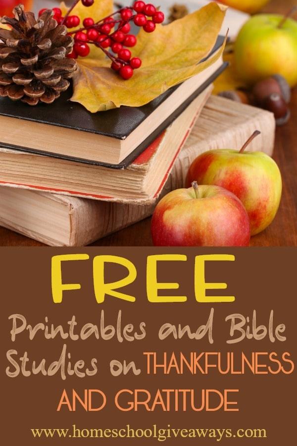 Thankfulness&Gratitudepin