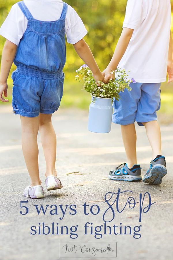 5-ways-to-stop-sibling-fighting-PIN