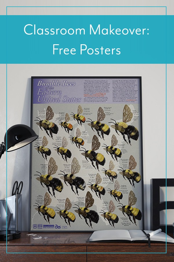 Classroom Makeover: Free Posters Delivered to You!