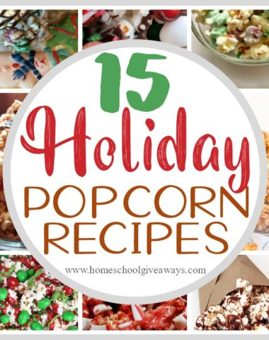 If your family loves snacking on popcorn, you'll want to give these holiday twists a try! From Chocolate to Nutella to Candy Cane to Gingerbread and more - you're sure to find a new family favorite! Grab a cup of hot chocolate and curl up by the fire with one of these! #holidays #Christmas #popcorn #family