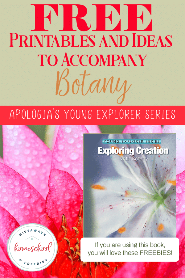 photo about Celery Experiment Printable Worksheet identify Apologia Investigating Production with Botany No cost Printables