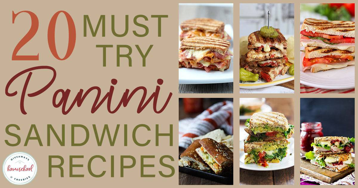 https://homeschoolgiveaways.com/2019/02/20-must-try-panini-sandwich-recipes/