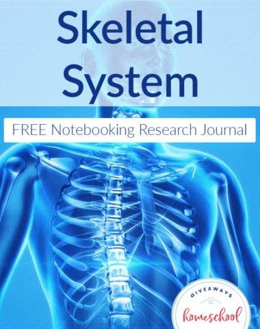 diseases-skeltal-system-notebook