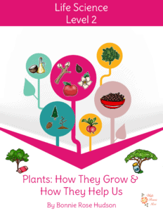 Plants-How They Grow & How They Help Us