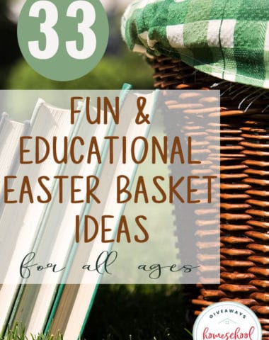 Are you looking to ditch the candy and sweet treats in the baskets this year? We've got some great educational and fun items your kids are sure to love! Check them out! #Easter #Easterbasket #hsgiveaways #family