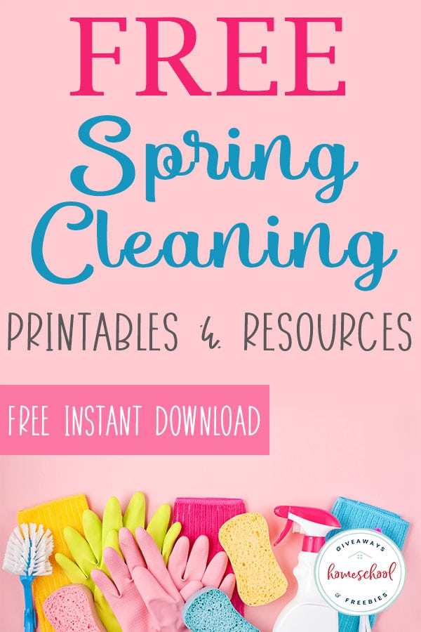 house cleaning products, gloves, sponge and rag for spring cleaning