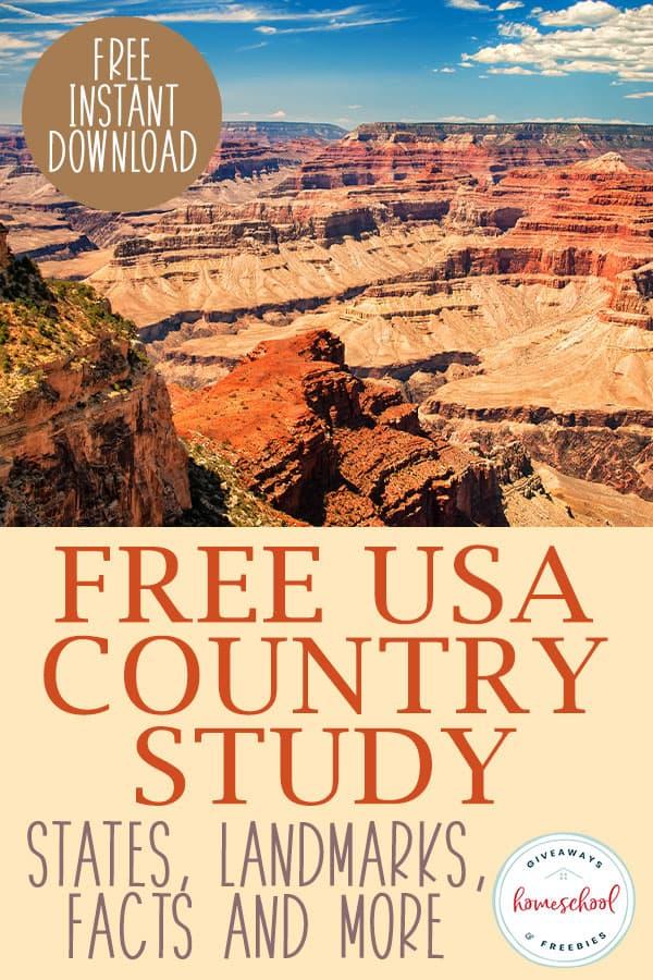 FREE USA Country Study