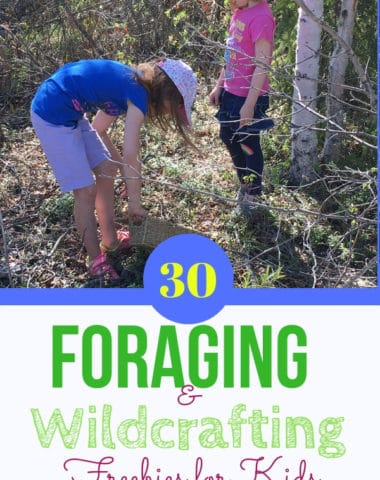 30 Foraging & Wildcrafting Freebies for Kids