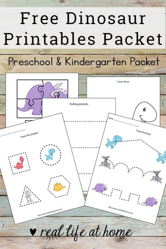 photograph about Kindergarten Packet Printable identified as Free of charge Printable Dinosaur Worksheets Packet for Preschoolers