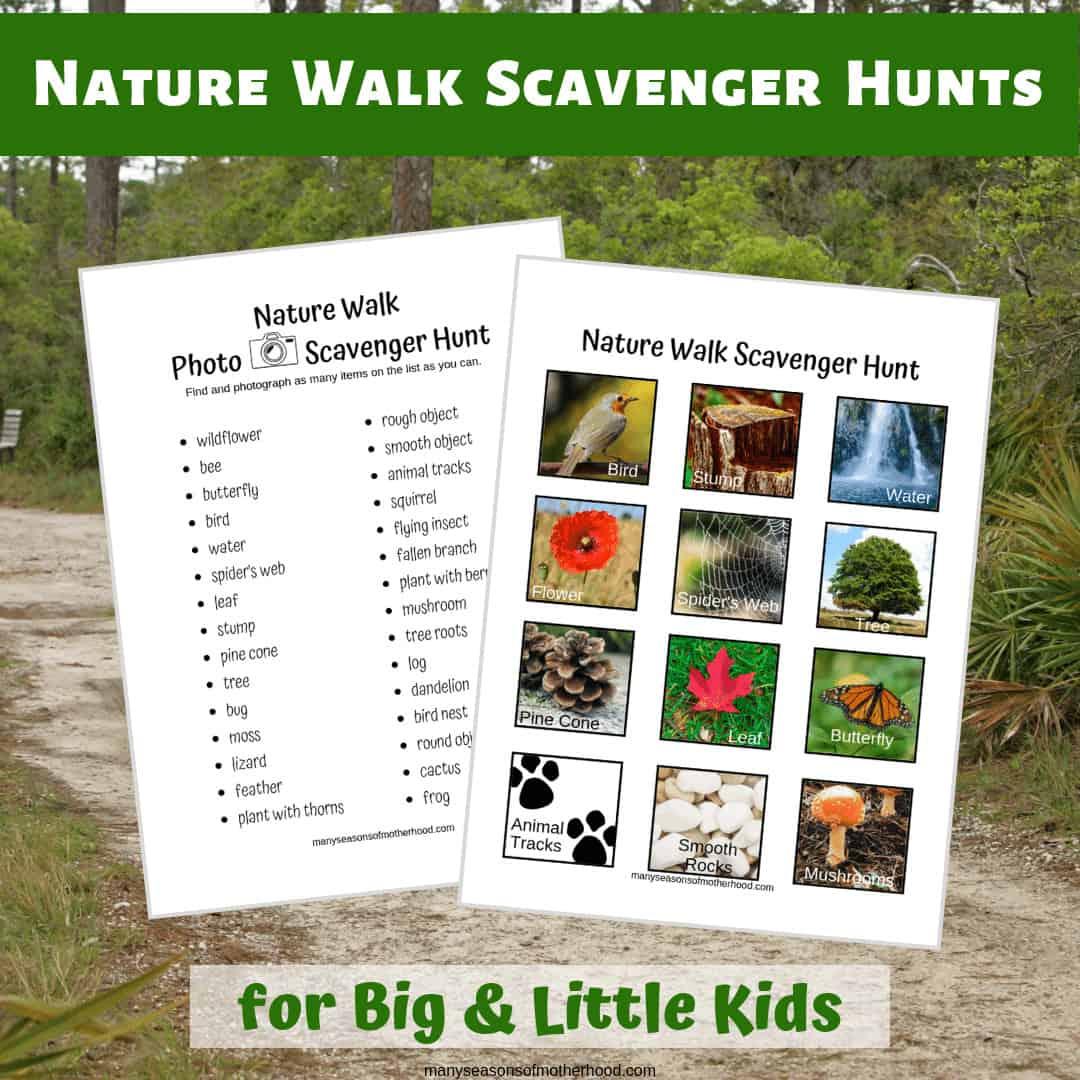 Nature Walk Scavenger Hunt includes a picture list for little kids and a photo scavenger hunt for big kids. #naturewalk #freeprintable #freebie