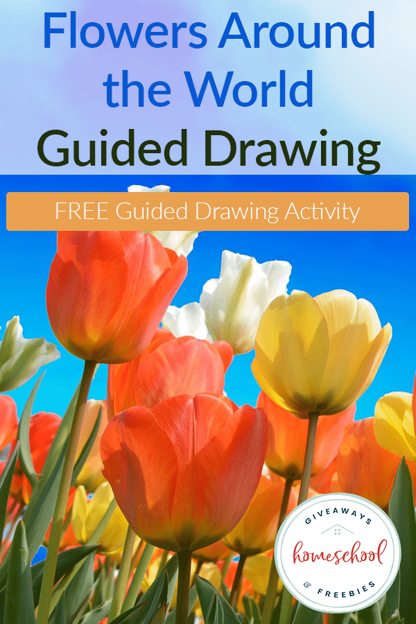 Guided-Drawing-Flowers-Around-the-World