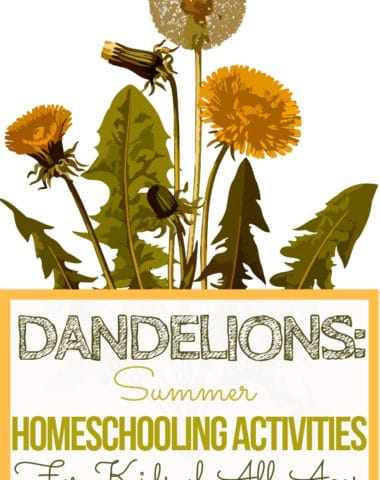 Dandelions: Summer Homeschooling Activities for Kids of All Ages