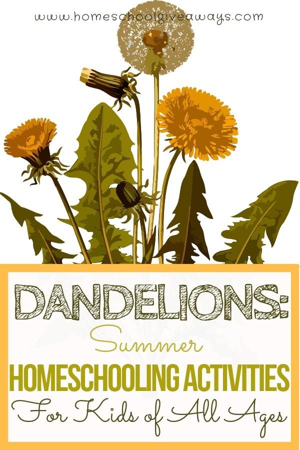 Dandelions: Summer Homeschooling Activities for Kids of All Ages