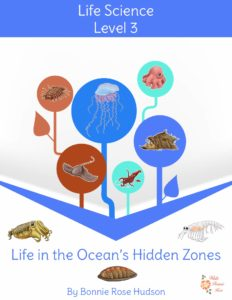 3rd-Life-in-the-Ocean's-Hidden-Zones