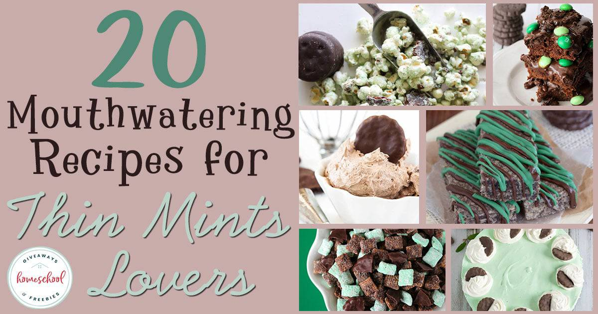 Do you love those delicious fudgy mint cookies? These delicious twists on the classic cookie favorite are sure to bring a smile to your face and make your taste buds happy! #recipes #thinmints #desserts #hsgiveaways