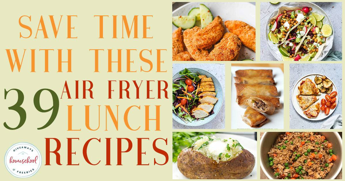 Save time, money and don't heat up your kitchen with these Air Fryer recipes. These are quick and easy, ready-t0-eat meals in no time, which makes them perfect for lunch! #recipes #lunch #airfryer #hsgiveaways