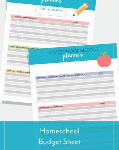 Homeschool Budget Sheet