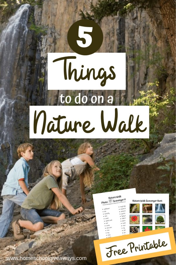 Add some extra fun to your next nature walk. Don't miss the free scavenger hunts for big and little kids too. #homeschooling #naturewalk #scavengerhunt #getoutside #homeschoolscience