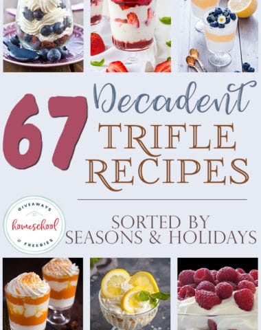 Trifle desserts are among my favorites to make and teach my kids make. They are so simple, yet absolutely delicious. We've gathered a HUGE list of recipes for you and even sorted them into seasons and holidays for easy reference. #trifledessert #trifle #recipes #hsgiveaways