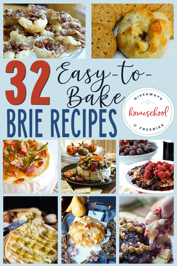 Who doesn't love an ooey-gooey cheesy recipe?! These easy-to-bake Brie recipes are perfect just in time for some cooler weather and the upcoming holidays! #recipes #brierecipes #foodrecipes #hsgiveaways