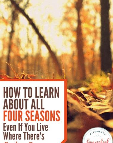 How to Learn About All Four Seasons #seasons #teachingseasons